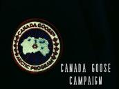 【買取キャンペーン!!】CANADA GOOSE(カナダグース) 4万円買取キャンペーン開催致します!!!!:画像1